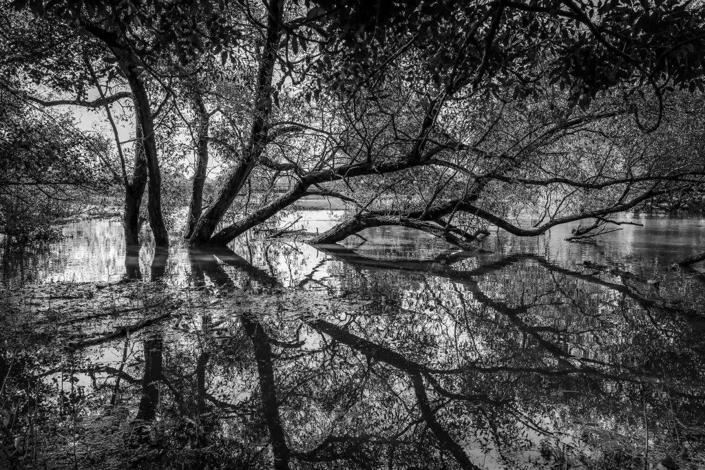 Alex Kennedy - Storm Alex - Avon River - Photograph