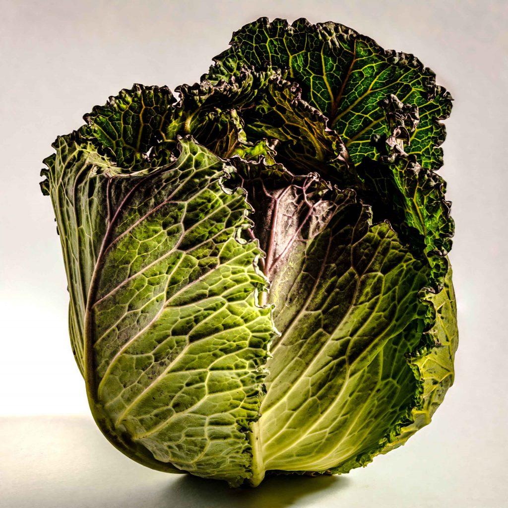 Will Niekirk - Cabbage - Giclee Print